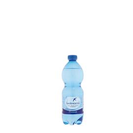 Acqua frizzante bottiglia PET 500ml San Benedetto (Conf. 24)