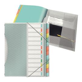 Libro monitore con 12 divisori multicolore Colour'Ice Esselte